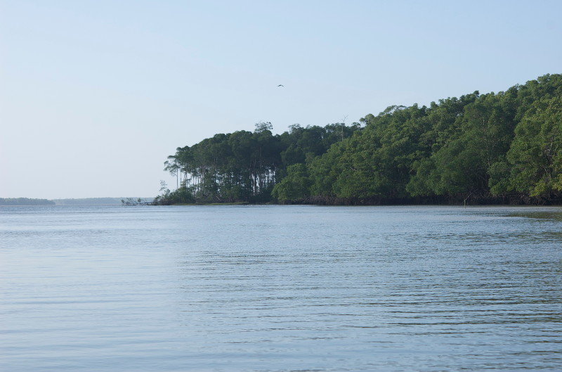 Insel4